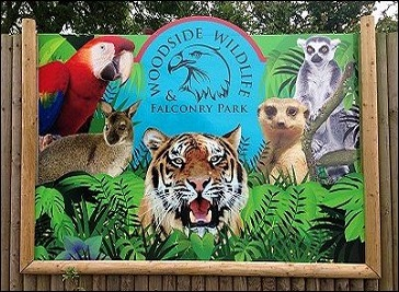 Woodside Wildlife and Falconry Park in Lincoln
